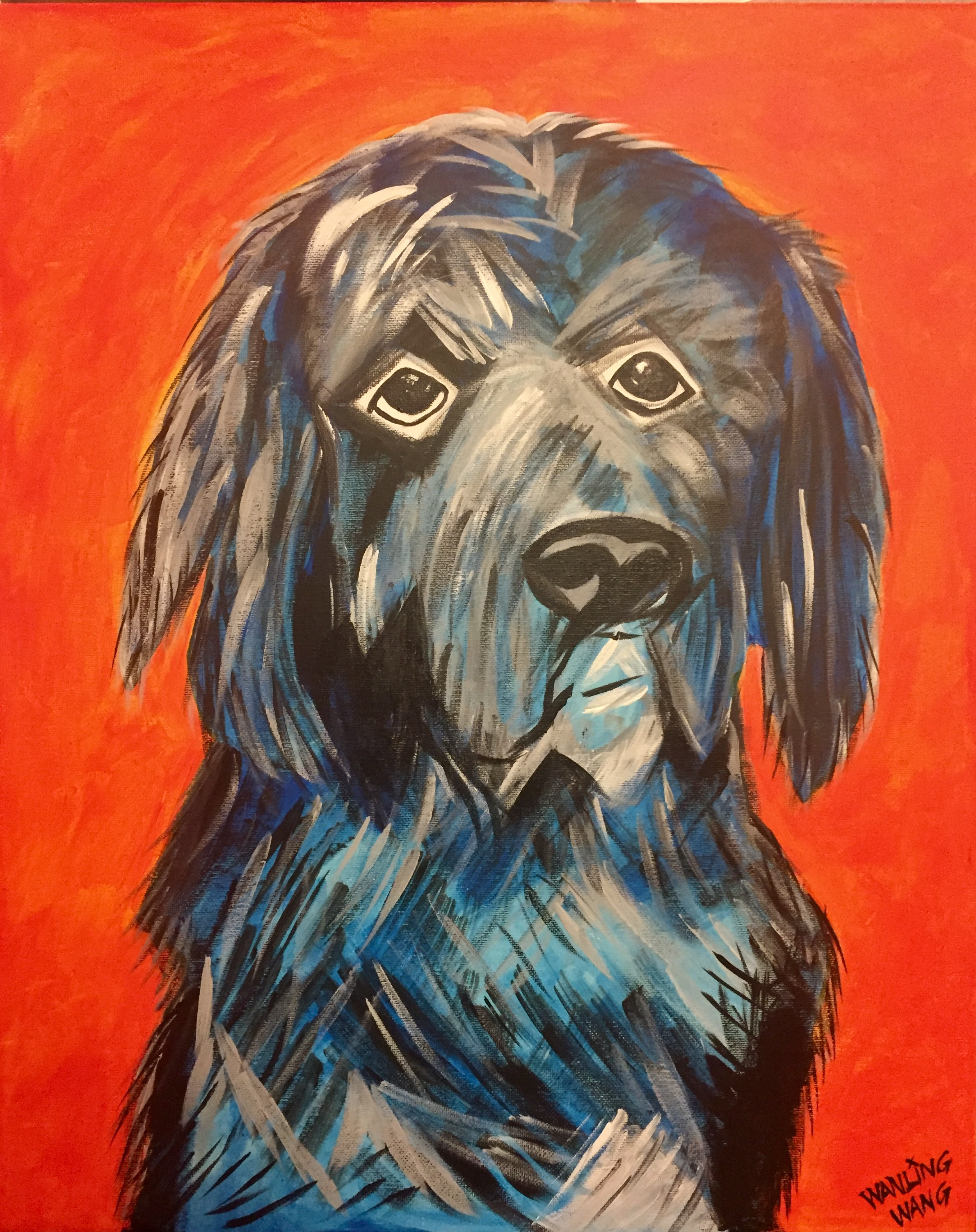 Newfie Dog Portrait