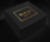Black_Box.png