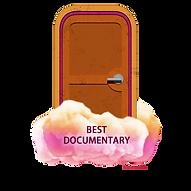 Best Documentary Category