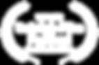 WINNER-RaleighFilmFestival-BestMusicVide