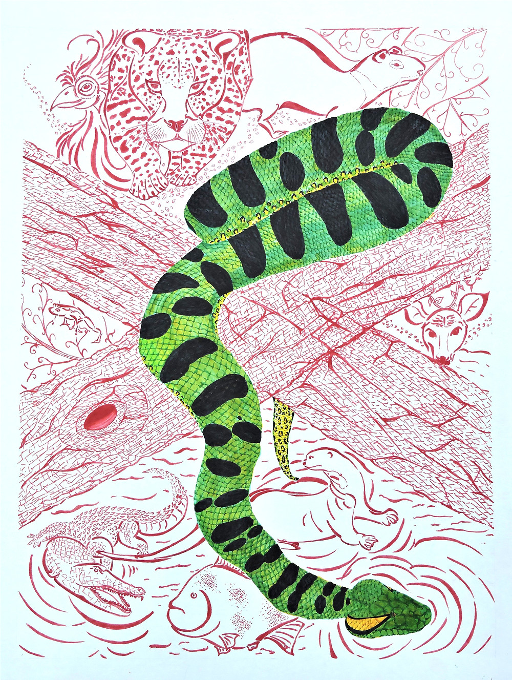 My main aim in this piece was to show my appreciation of wildlife in Guyana; it is my belief that we do not do enough to ensure the wellbeing of our animals here in this country, especially the anaconda which strikes fear in the hearts of many. The materials that I used to produce this piece are pencils, illustration pens (specifically 0.05 mm and 0.2 mm in thickness), alcohol-based markers, and white cardboard (also known as poster board).