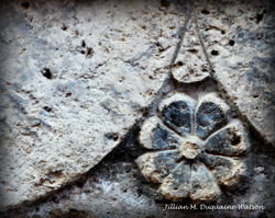 doorway flower of bosa