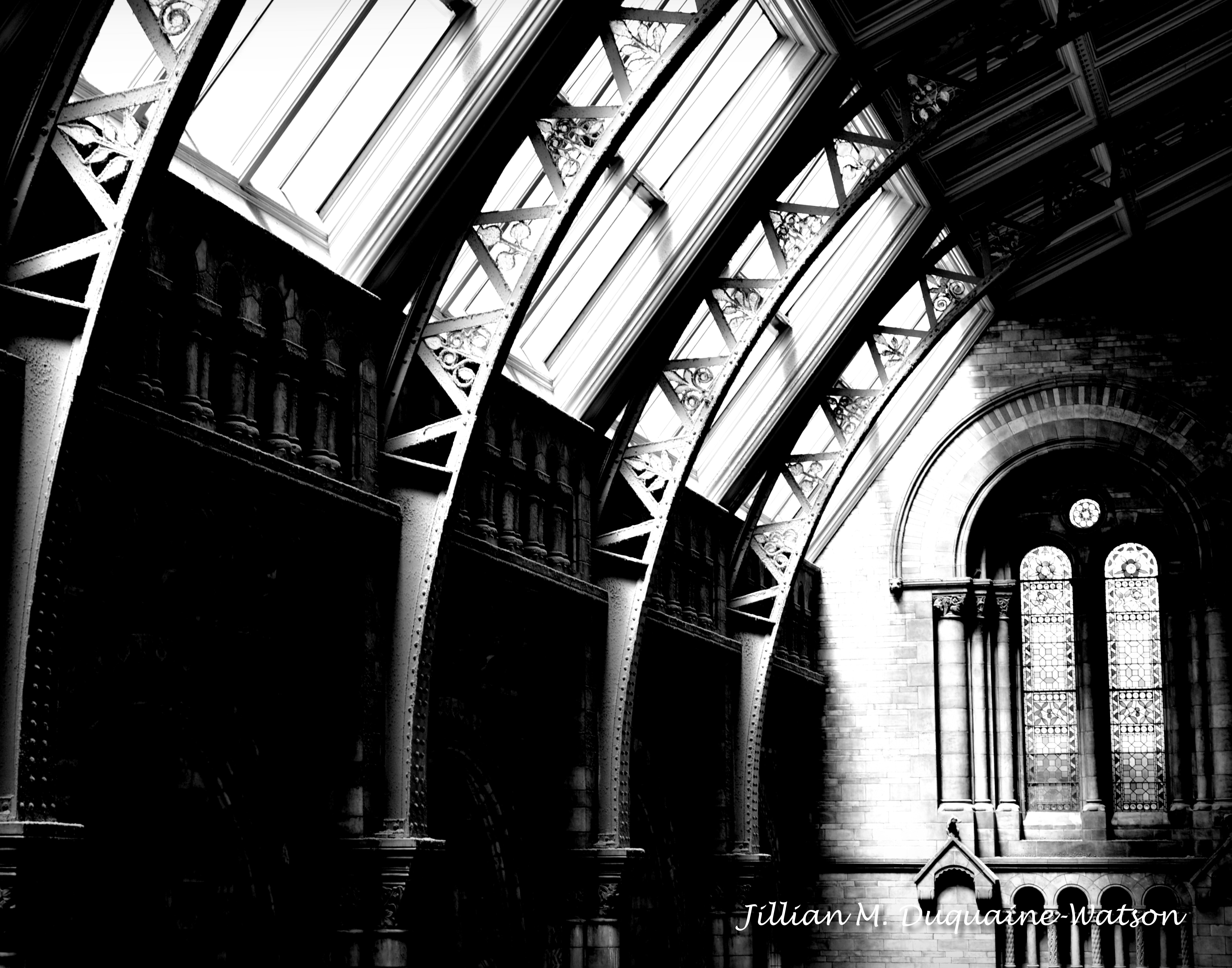 natural history museum 6 bw