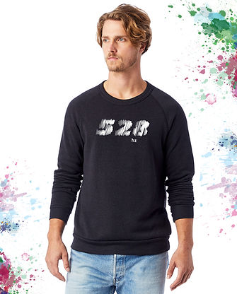528 unisex eco-sweater model-male (black