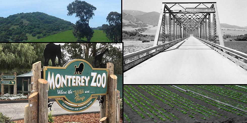 2021 Car Week: Monterey Zoo