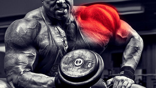 Optimizing Inflammation: The unsung key to muscular growth and performance