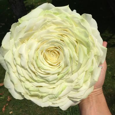 bouquet sposa glamelia bianca brescia