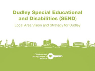 Supporting Children and Young People with Special Educational Needs (SEND)  and/or Disabilities