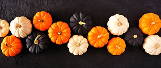 Autumn pumpkin banner Halloween colors o