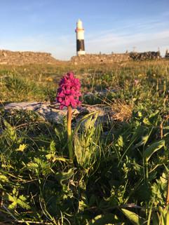 Inis Oírr Lighthouse