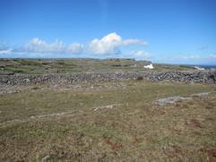 Grasslands of Aran