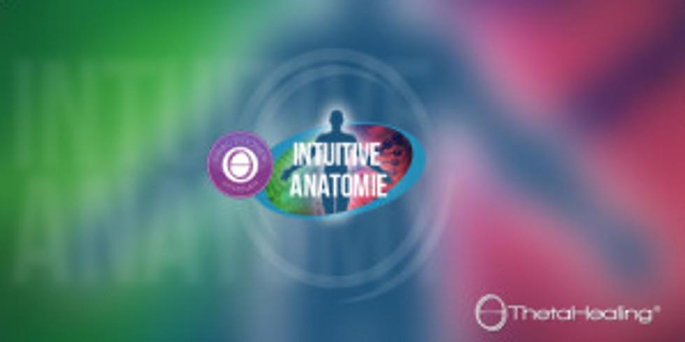 Интуитивная анатомия