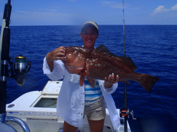 Red grouper deep sea 8 hour