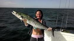 Kingfish season hits twice a year