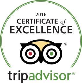 tripadvisor certif. of excellence