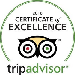 tripadvisor certif. of excellence