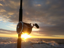deep sea fishing Penn reel