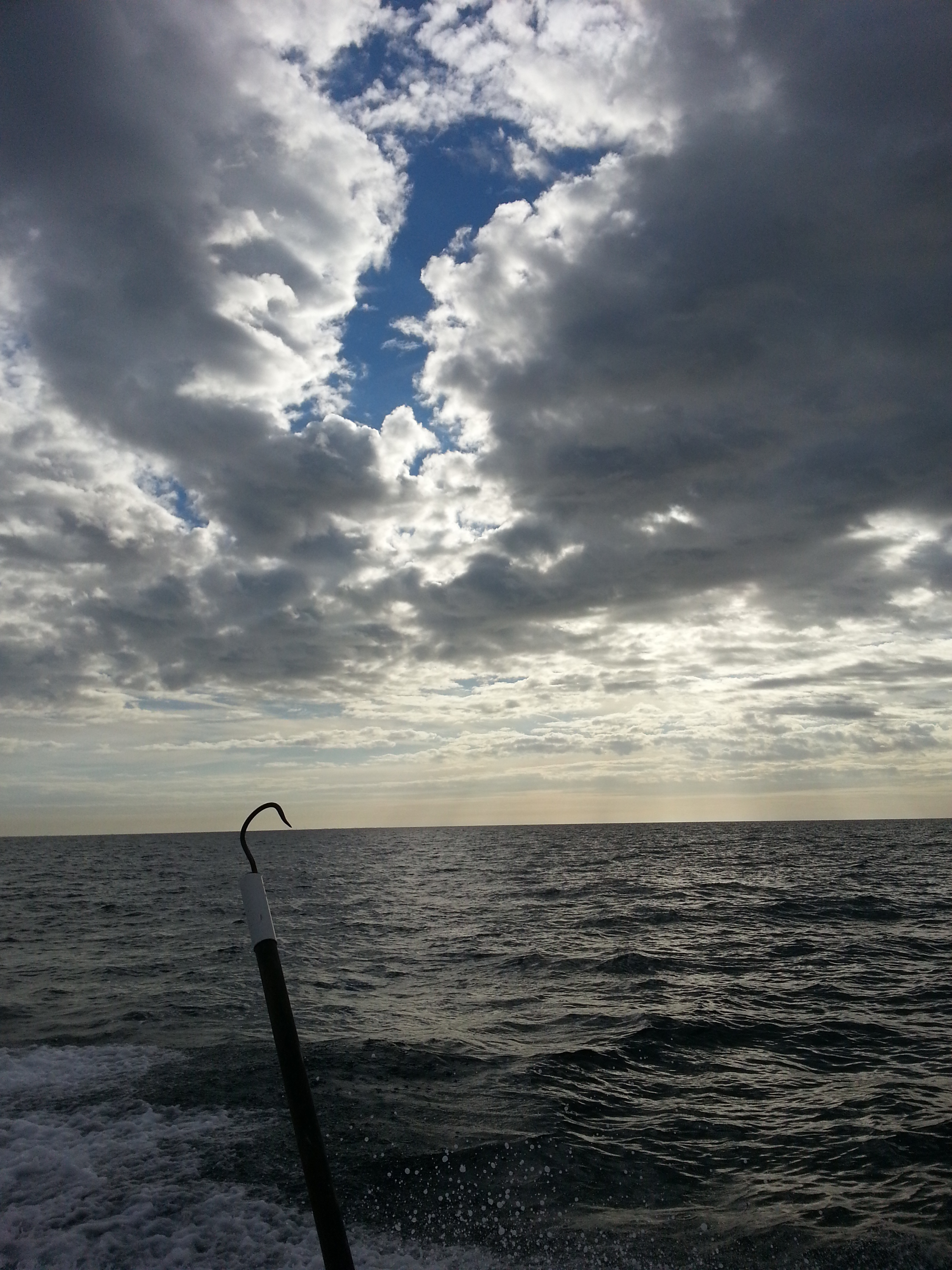 Florida offshore fishing charters ta