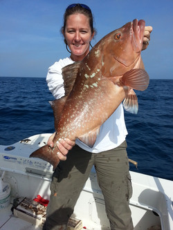 Bent Charters Fishing Red Grouper