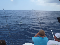 Mahi jumping out on Hook