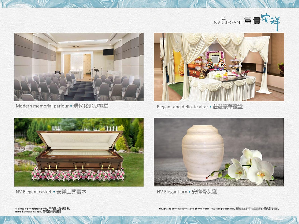 FSP_ipad-Elegant_Final (1)_pages-to-jpg-