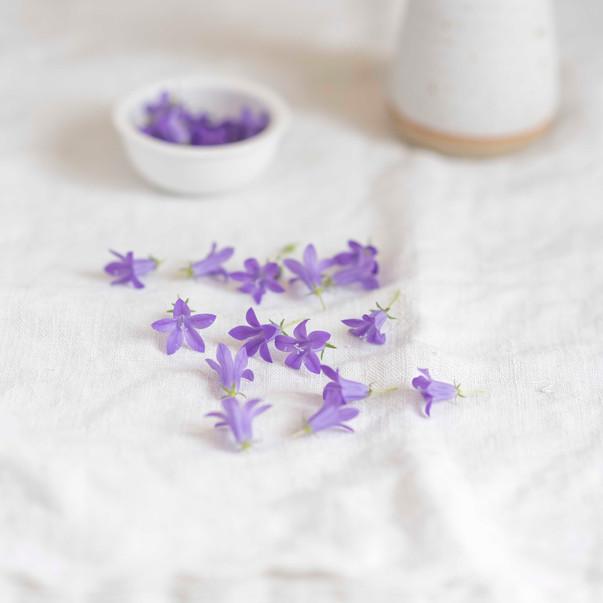 fleurs comes-966.jpg