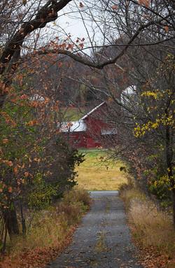 Farm Down Lane