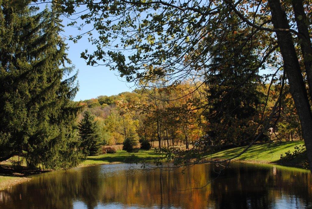 Littlefield's Pond