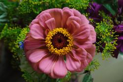 017 PINK FLOWER