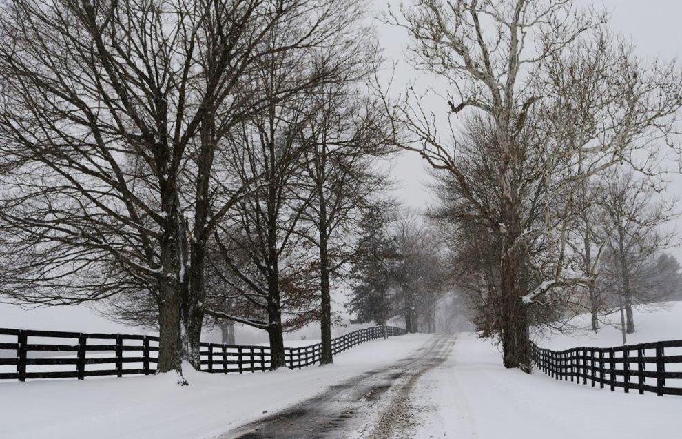 Mount Joy Road