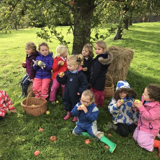 eating apples under the apple tree.jpg