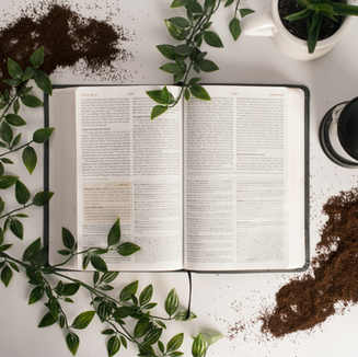 The Bible. We believe the Bible, as originally given, to be without error, the fully inspired and infallible Word of God and the supreme and final authority in all matters of faith and conduct.