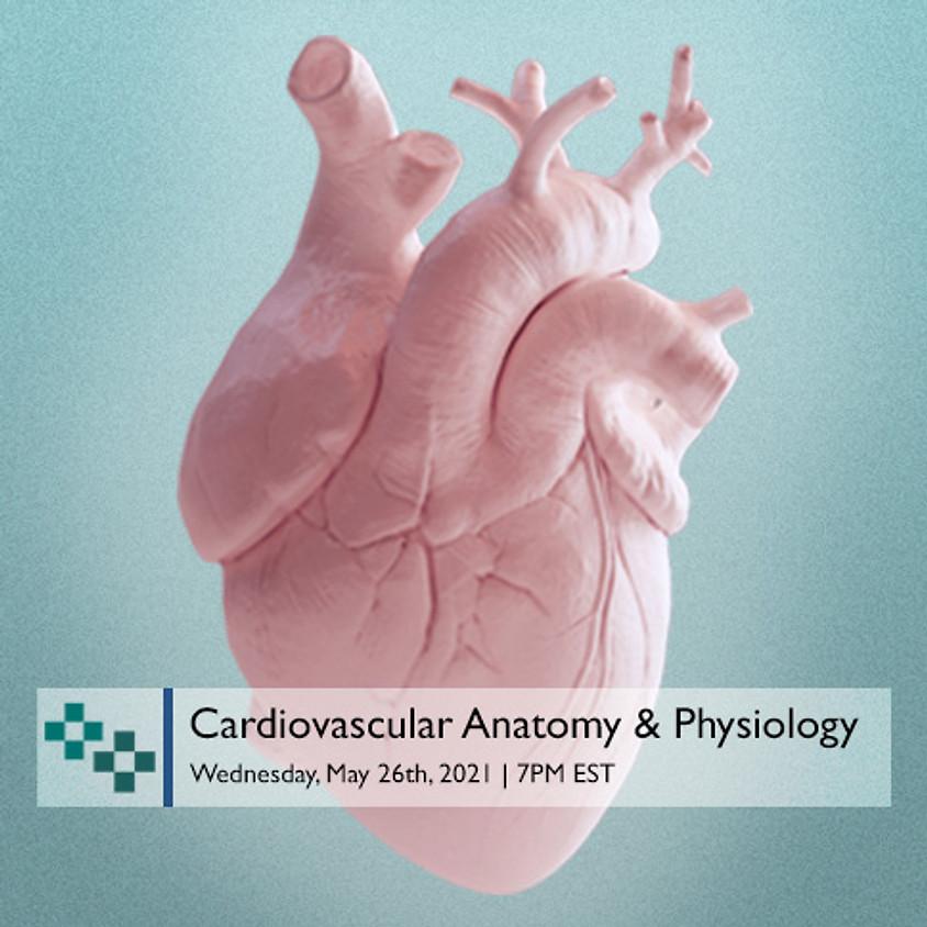 Cardiovascular Anatomy & Physiology
