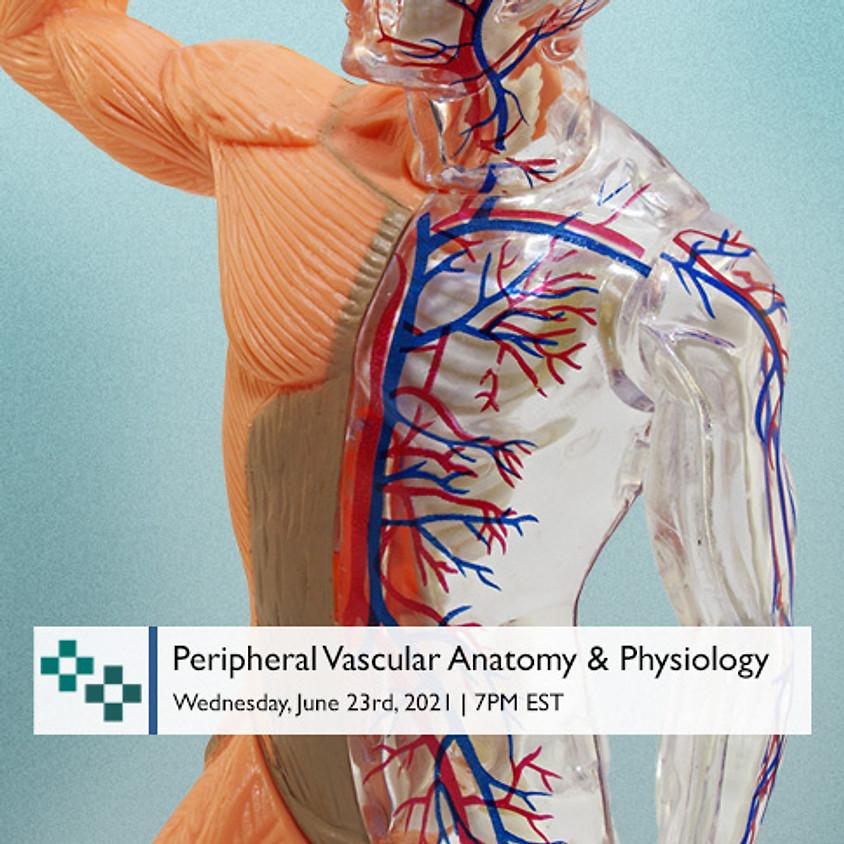 Peripheral Vascular Anatomy & Physiology  (1)