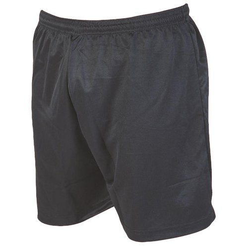 Holgate Academy P E shorts