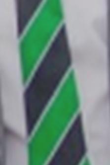Holgate Academy Tie
