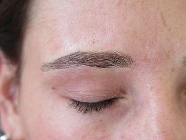 dark brows_5b.JPG