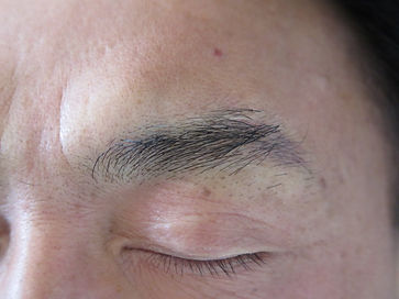 men's brow_3a.JPG