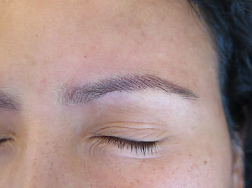 dark brows_59b.JPG