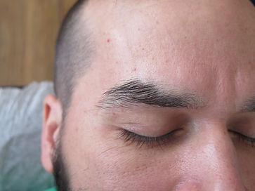 men's brow_1a.JPG