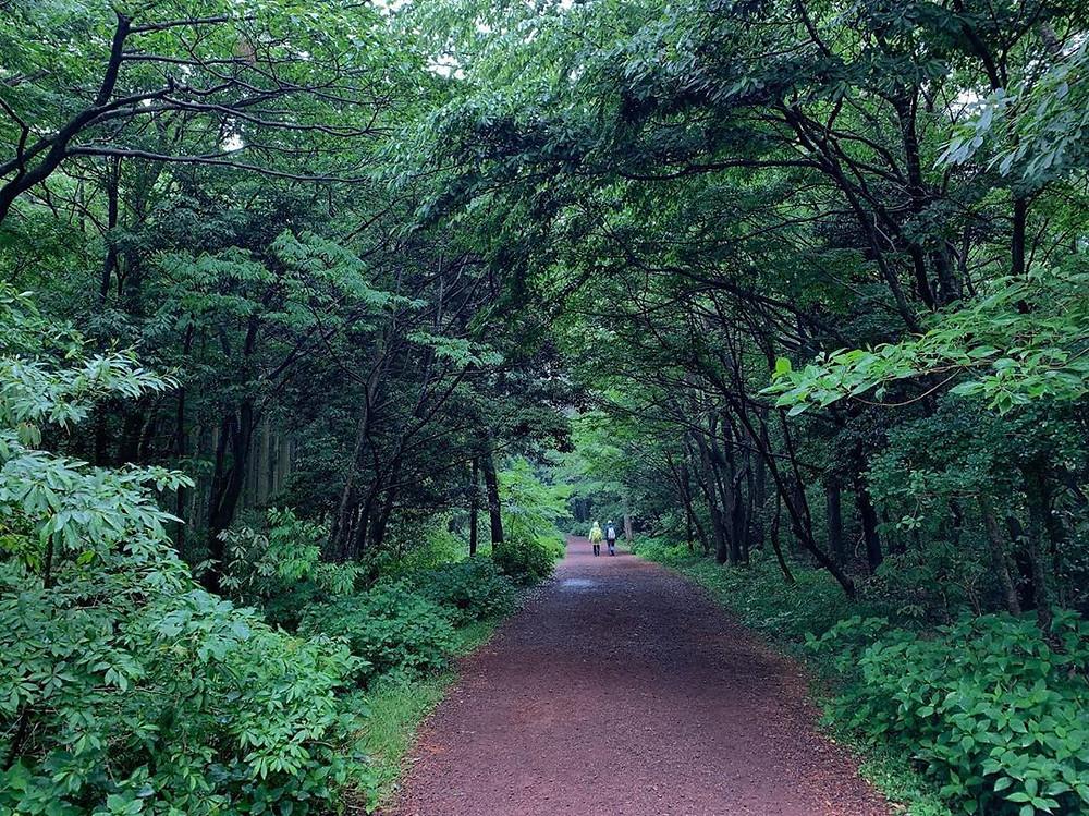 Jeju Island in South Korea