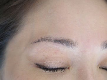dark brows_64a.JPG