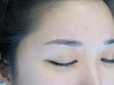 dark brows_63b.JPG