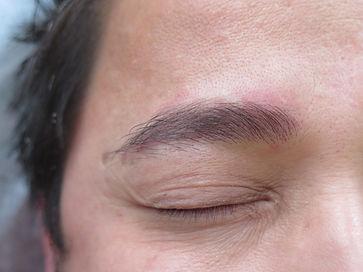 men's brow_4b.JPG