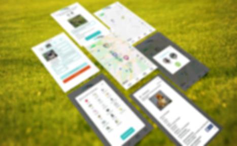 App Screen Showcase Mockup.png