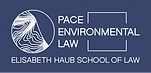 Pace_Logo.png