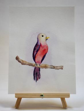 wc bird.jpg