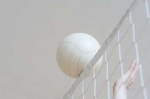 net ball_edited.jpg