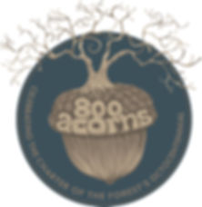 800 ACORNS 6B.jpg