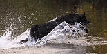Kita eau.JPG